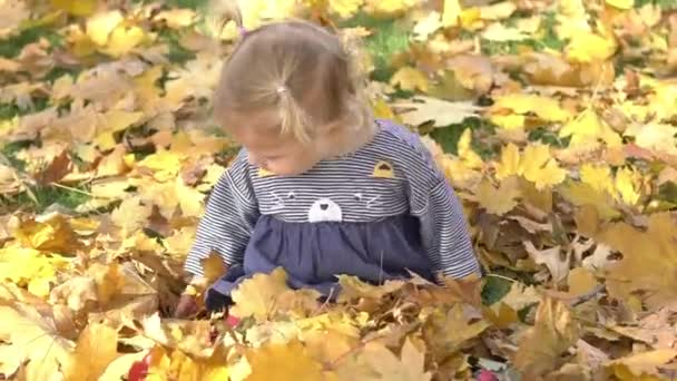 Real Time Cute Baby Girl Playing With Leaves In Autumn