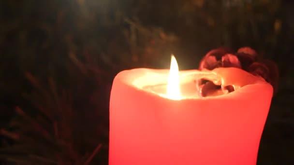 Vier rote Weihnachtskerzen mit Tannenzweig.