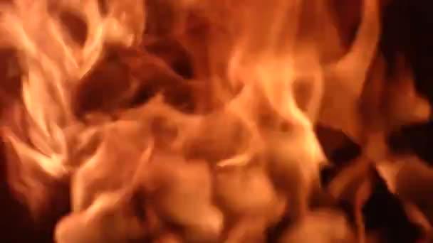Čistý jasný plamen - přírodní pozadí. Oranžový oheň hoří, černý povrch na zadní straně. S originálním zvukem