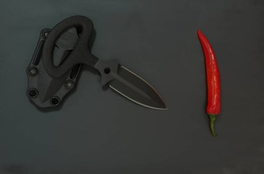 Sharp knife and chili pepper. Diagonal composition.