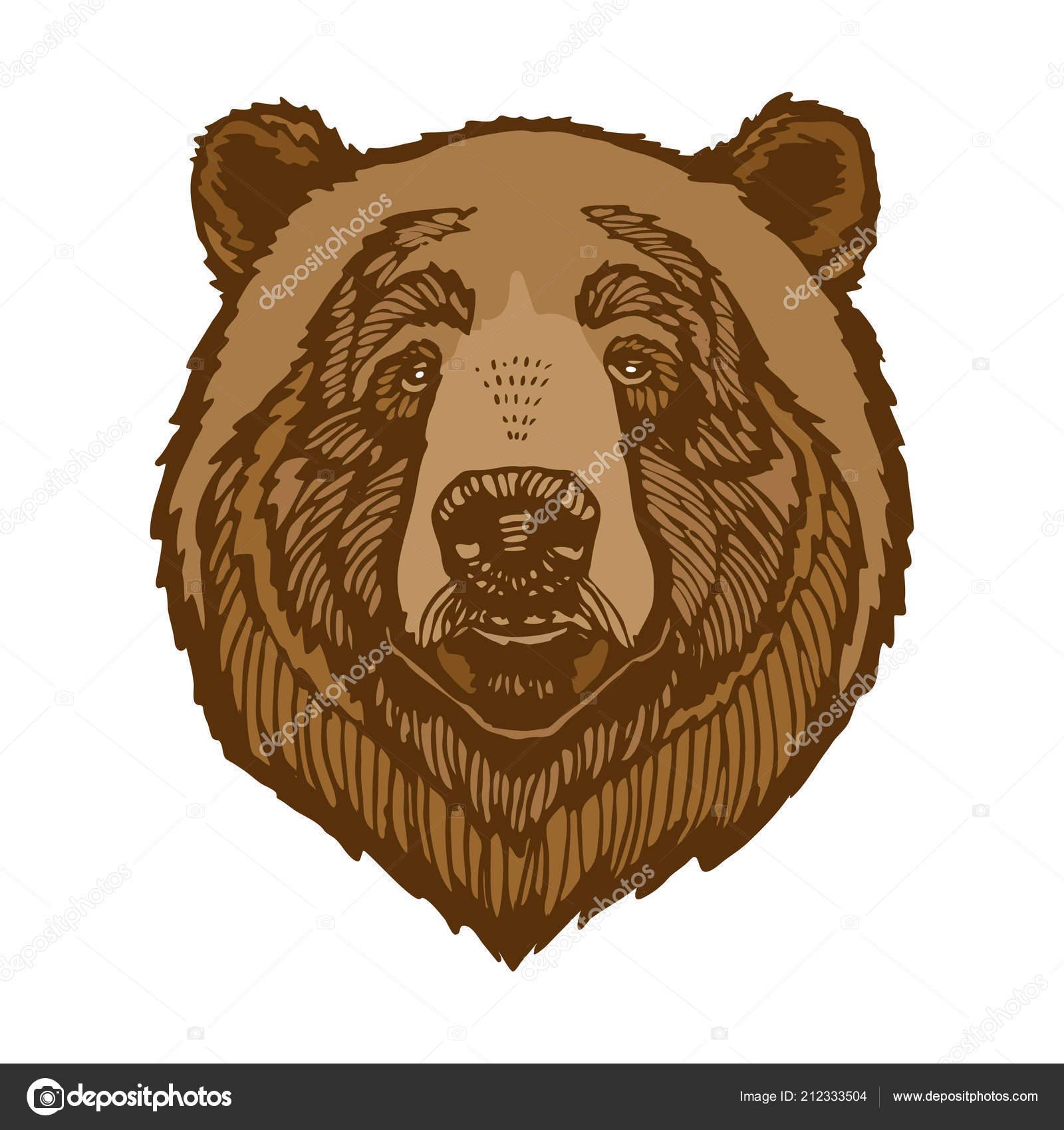 картинка голова медведя за кустом вес этой