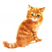 Photo Cute little kitty Watercolor illustration isolated on white background