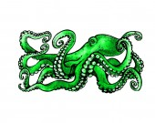 Photo Green Octopus. Watercolor illustration on white background. Tattoo sketch