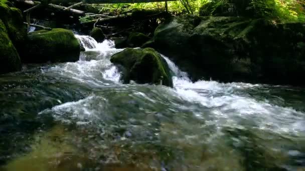 Lesní horské bystřiny běží přes skály