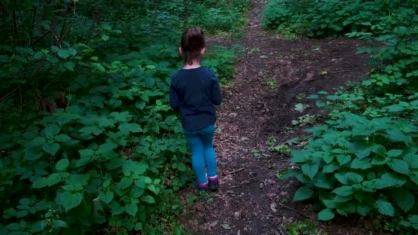 Little girl walking on a footpath, alone in dark, spooky forest