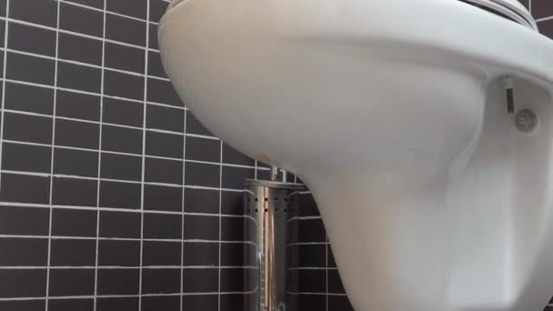 Toilet bowl, lavatory in modern bathroom with black and grey tiles, HD 1080p, close up, tilt down move