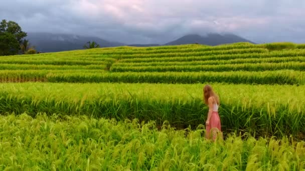 Aerial view of young woman walking by road near rice fields