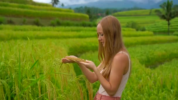 Young beauty redhead woman standing at green field and holding green wheat plants in hands