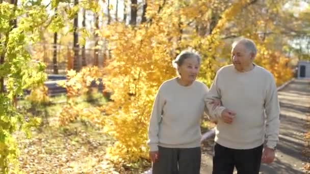 an elderly couple walking down the walkway and smiling to each other in a park in a beautiful autumn environment
