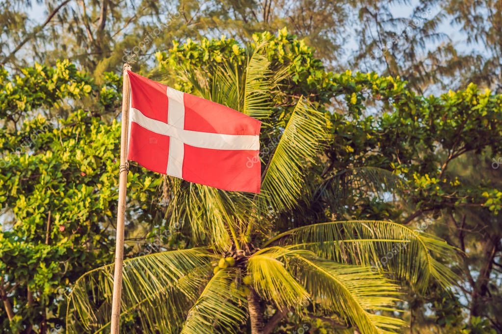 Flag of Denmark against the backdrop of palm trees