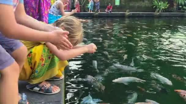 Zwei kleine Jungen füttern bunte Karpfen in einem Teich in einem asiatischen Tempel. Schuss auf ein Handy