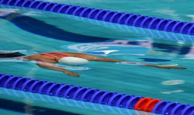 Women compete in swimming pool. Women swimming under water in dolphin style. Swimmer in swimming pool.
