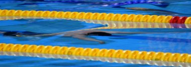 Men compete in swimming pool. Men swimming under water in dolphin style. Swimmer in swimming pool.