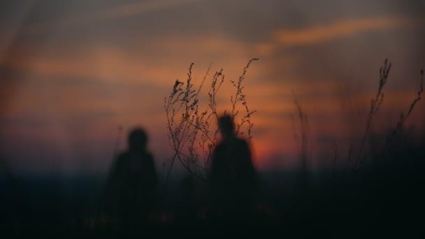Madre, nonna e piccolo figlio che tengono le mani cammina sullerba al tramonto di estate