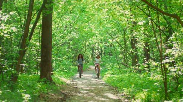 Sunny day in the forest two girls ride on the path on bicycles and communicate