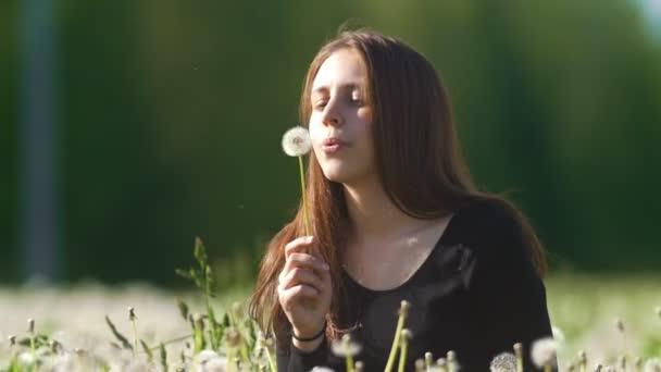 Roztomilý šťastná dívka foukání Pampeliška na louce pampelišek