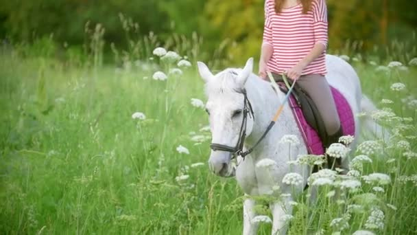 Young woman galloping on horse through the meadow at summer evening