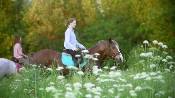 Young women riding on horses through the meadow at sunset