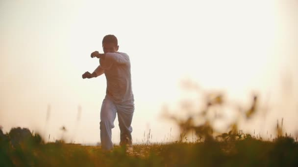Strong man focused on the movements of the dance capoeira, trains on the green grass, summer, at sunset