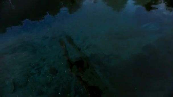 Mladý muž s vysportovanou postavu skočí do vody a plave