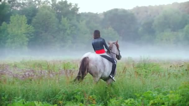 Young rider riding a horse jumps to the fog on the background of beautiful nature