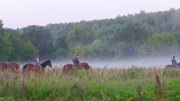 Young people walking on horseback on the background of beautiful nature, forest, fog