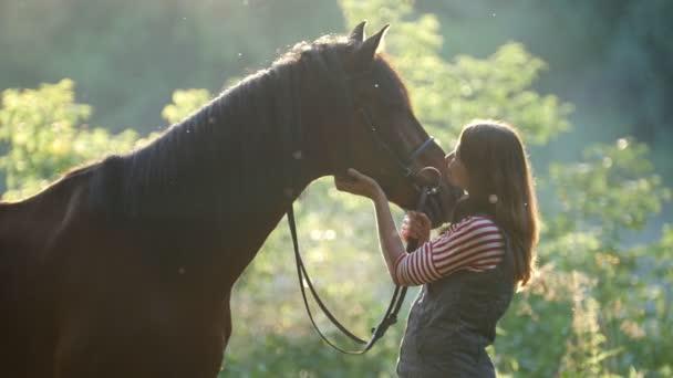 Fiatal nő simogató lovak orrát az erdőben, reggel, szép sugárzás