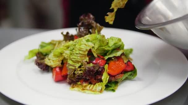 Šéfkuchař připravuje salát v rámci rukou šéfkuchař, zblízka