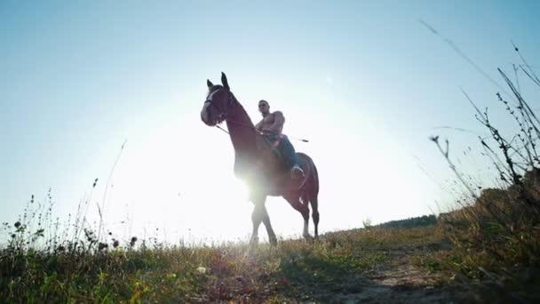 starker muskulöser junger Mann zu Pferd auf einem Feld in der Sonne