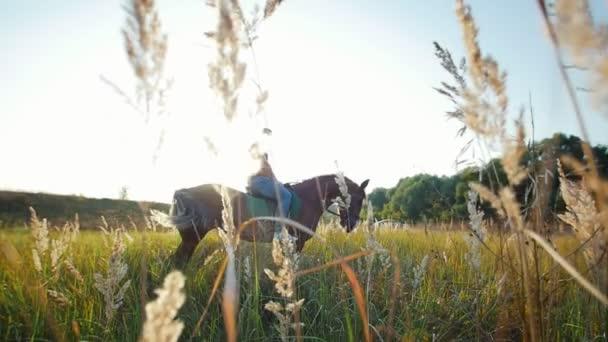 ein kräftiger Mann mit muskulösem Körper sitzt auf einem Pferd inmitten der wunderschönen Natur