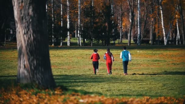 Young fit people running in the park. Back view.