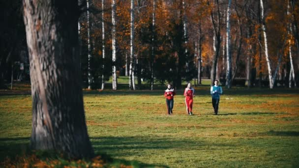 Young people running in the park. Run towards the camera