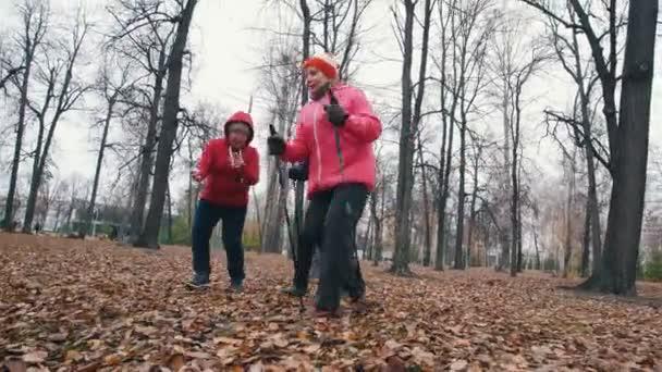 Zwei ältere Frauen gehen schnell mit Nordic-Walking-Stöcken