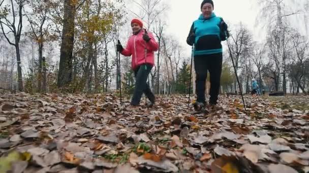 Zwei ältere Frauen beginnen mit Nordic-Walking-Stöcken zu gehen. Auf einem toten Blatt wandeln