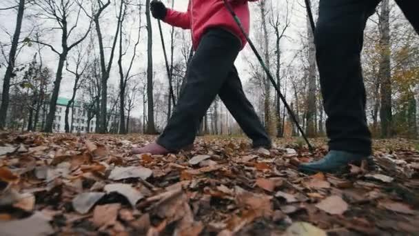 zwei ältere Frauen auf Nordic-Walking-Stöcken. Im Spätherbst auf einem abgestorbenen Laub spazieren. Zeitlupe