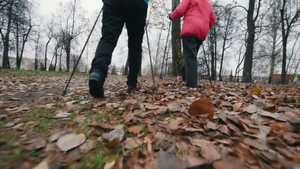 zwei ältere Frauen auf Nordic-Walking-Stöcken. Im Spätherbst auf einem abgestorbenen Laub spazieren. Zeitlupe. zurück