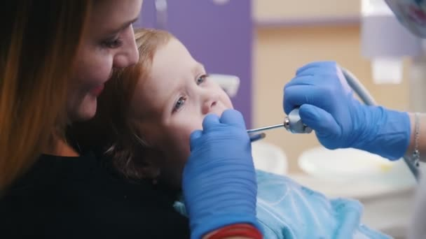 Dentistry. Female dentist examines the oral cavity of little baby