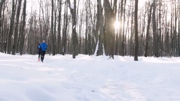 Zimní les. Mladý muž a žena v lese ráno