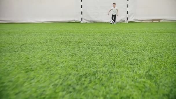 Indoor football arena. Little boy leads the ball alone