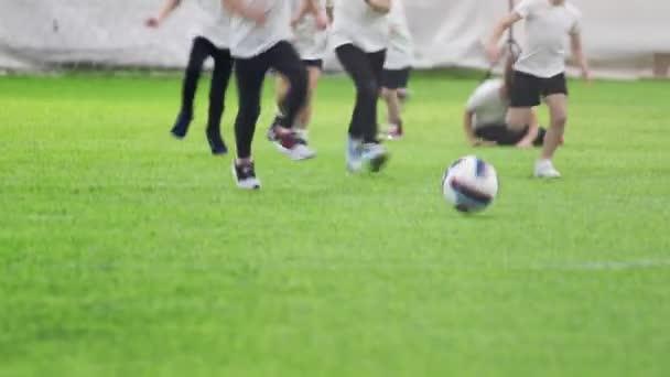 Fußball-Hallen. Kleine Kinder spielen aktiv Fußball