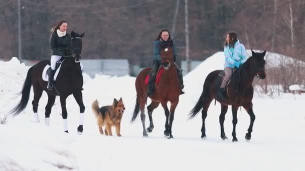 Tři ženy na koních v jedné vesnici se psem běží v blízkosti jimi v zimě