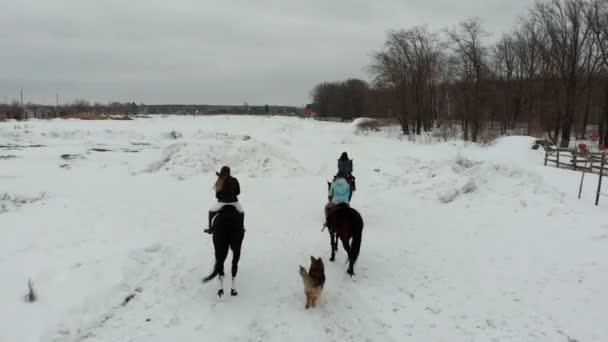 Skupina mladých žen jezdeckých koní na zasněženou plání. Pohled zezadu