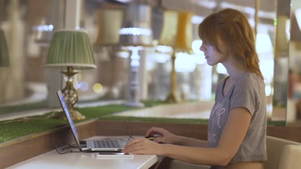 Young beautiful woman using laptop in cafe