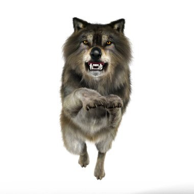 Rendering Snarling Attacking Wolf
