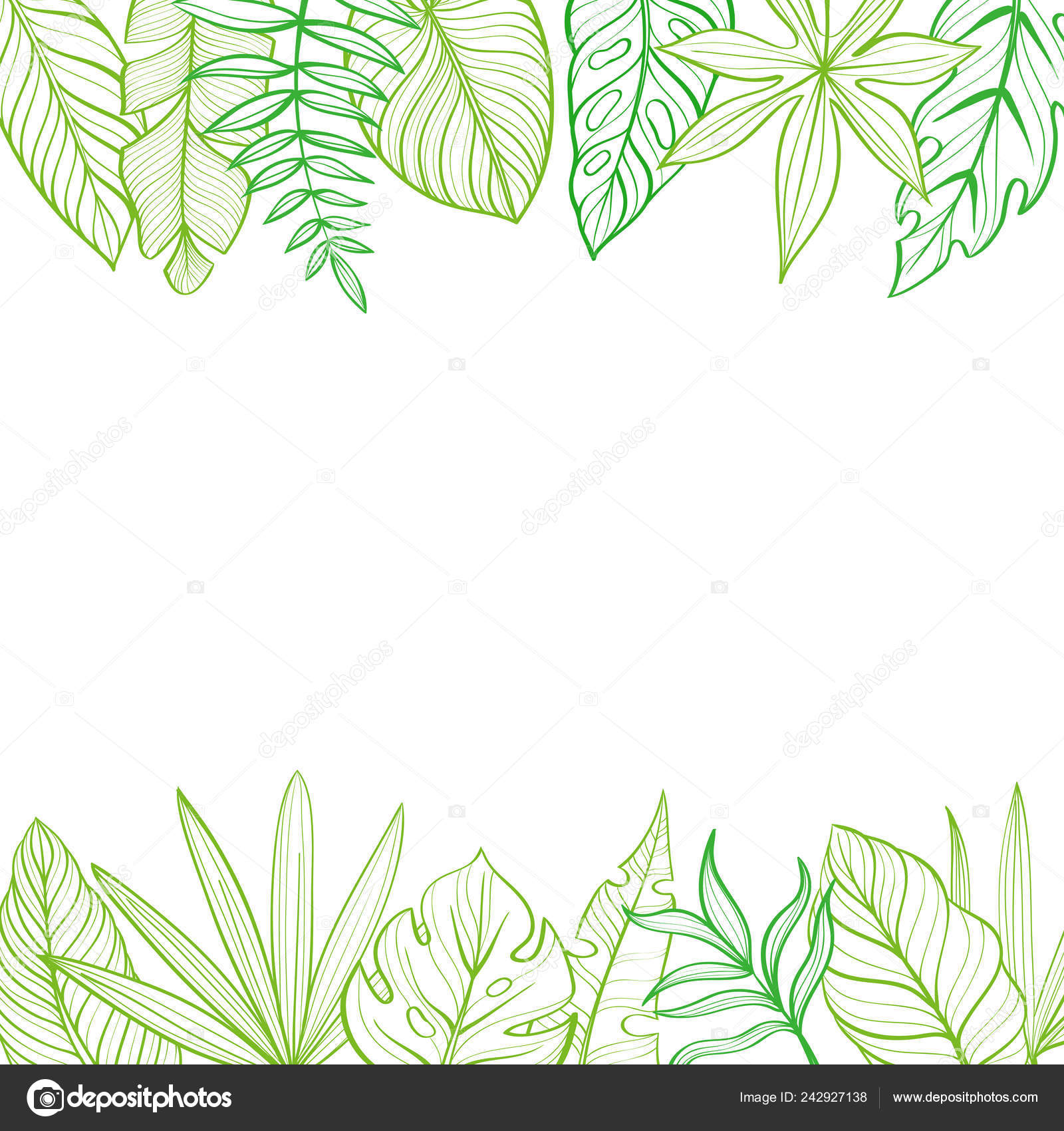 Frame With Tropical Leaves Postcard Hand Drawn Illustration Line Drawing Stock Vector C Elena Al 242927138 Each brush has a resolution of around 2000 pixels, which. frame with tropical leaves postcard hand drawn illustration line drawing stock vector c elena al 242927138