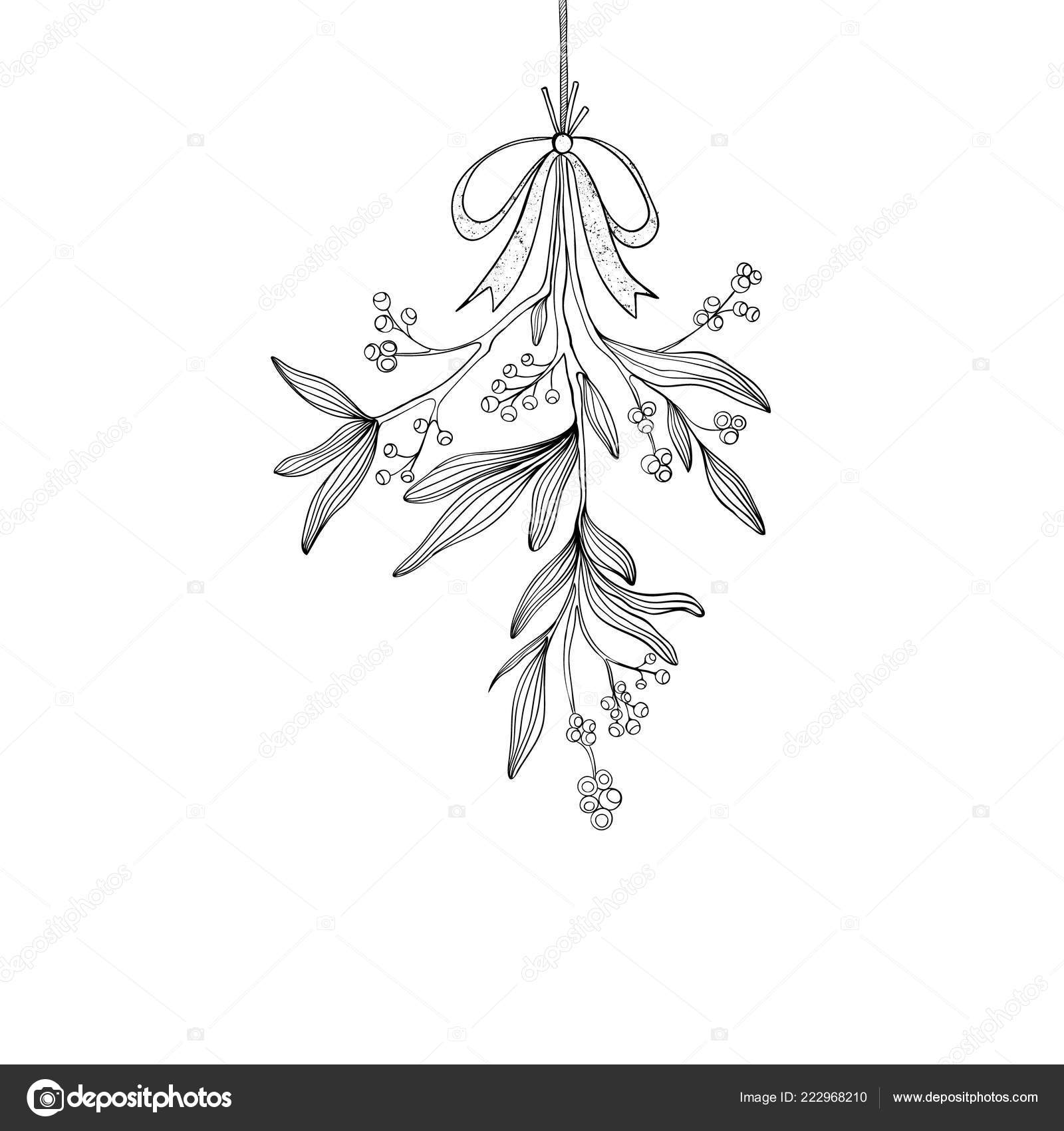 hand drawn mistletoe vector christmas plant background romantic