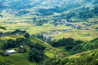 Viewpoint of Tavan village on rice field terraced at Sapa, Vietnam