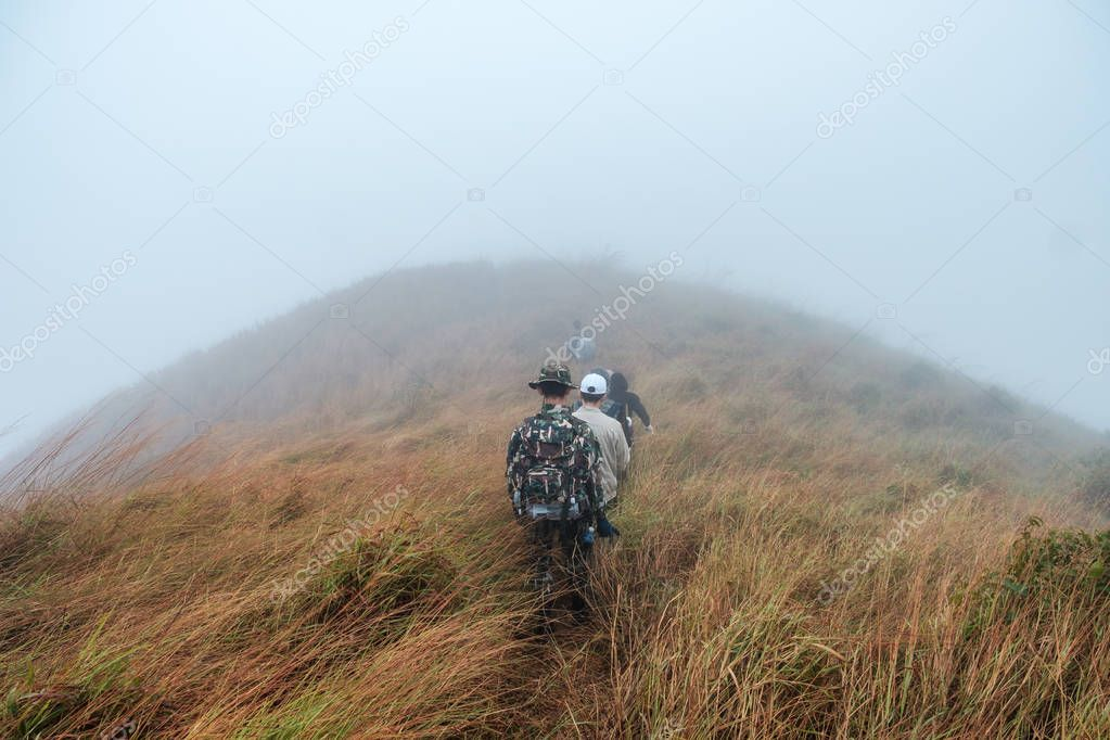 Tourist groups trekking in meadow on hill in foggy