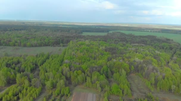 Wälder und Felder der belarussischen Luftaufnahmen