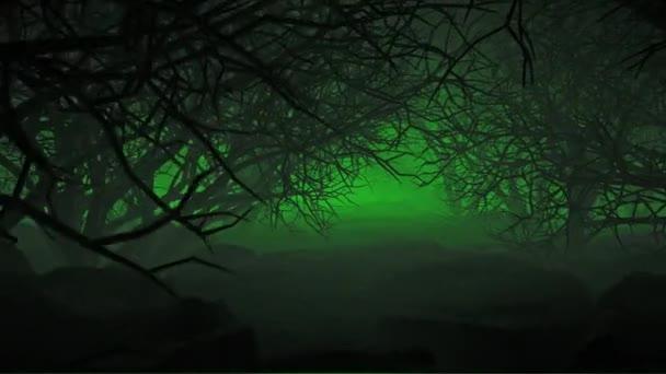 Halloween In Night Forests je filmový záznam pro horory a kinematografii v děsivé scéně. Také dobré pozadí pro scénu a tituly, loga.